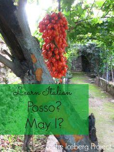 Learn Italian: Posso - May I?