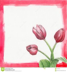 Watercolor Frame With Tulips - Download From Over 36 Million High Quality Stock Photos, Images, Vectors. Sign up for FREE today. Image: 30336436