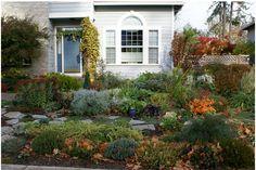 Lawn Alternative: Front Entry Garden Photo Montage