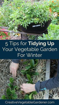 How to prepare your vegetable garden for winter so you set yourself up for a successful spring.