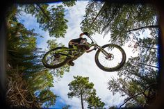 Biking in the forest