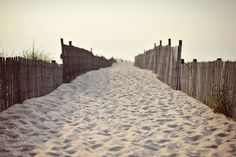 Cape Henlopen, Delaware  #beach, #sand  one of my favorite places!
