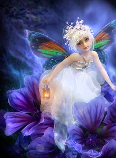 Rainbow winged fairy and lityer petite fée papillon