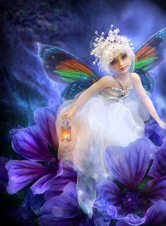 petite fée papillon