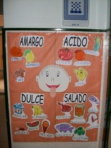 alimentos salados dulces amargos y acidos - Buscar con Google Body Preschool, Preschool Curriculum, Preschool Science, Teaching Science, Science For Kids, Science Activities, Science And Nature, Teaching Kids, Science Classroom