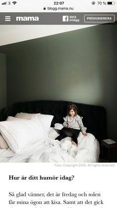 Bed Pillows, Pillow Cases, Velvet, Pillows