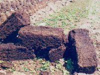 Harvesting Peat in New Brunswick