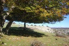Sierra de Urbasa en Navarra.www.casaruraldenavarra.net