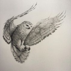 """""""It's 'owl' over bar the hooting! I've finally finished this snowy owl in flight, those wings just kept going and going  It's been a real labour of love…"""""""