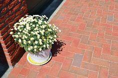 Gardenplaza - Funktionell und ausdrucksstark: die Hauseinfahrt als Gestaltungsfläche