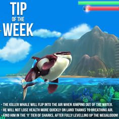 It's time for this week Tip of The Week with the Killer Whale! Boost out of the water to see him flip in the air and survive on land a lot longer. Now we're having a WHALE of a time!