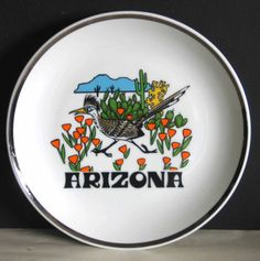 Arizona-AZ-SOUVENIR-State-Plate-Roadrunner-Graphics-7-vintage-FREE-SH