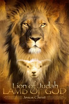 The Lion of Judah (Tribe of Judah or Jesus) and the Lamb of God. In CS Lewis, Aslan is the Lion, Jesus. Christian Posters, Christian Artwork, Christian Pics, Lion Of Judah Jesus, King Jesus, Arte Judaica, Lion And Lamb, Padre Celestial, Tribe Of Judah