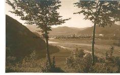 BU-F-01073-5-00400-1 Piatra Neamţ, vedere generală, -1904 (niv.Document)
