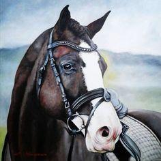 A splendide horse! - Pittura, 50x50x2 cm ©2015 da Mihai Ionescu - Realismo, Tela, Animali, painting, horse