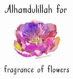 8. Alhamdulillah for fragrance of flowers #AlhamdulillahForSeries