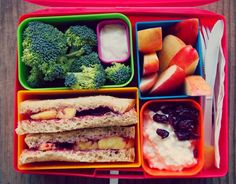 Ideas for little lunches for busy moms and hungry kids! via @Taralynn McNitt