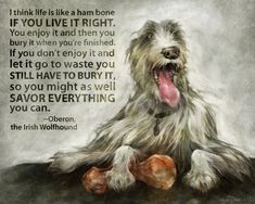 Oberon the Irish Wolfhound. by galendara on Etsy The Iron Druid Chronicles, Funny Animals, Cute Animals, Ham Bone, Real Quotes, Whippet, Book Characters, Big Dogs, Book Nerd