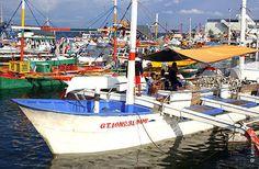 Giới thiệu về nghề câu tay cá ngừ Phi-líp-pin | Vietnam Aquaculture Network - Mạng Thủy sản Việt Nam