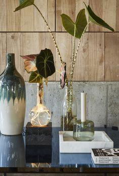 kickstarter campaign spruitje — APRIL AND MAY Indoor Garden, Indoor Plants, Framed Leaves, Joinery Details, Scandinavian Living, Geometric Lines, Seat Pads, Nordic Design, Little Boxes