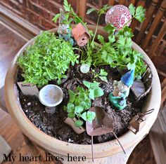 My Heart Lives Here: Fairy Herb Garden