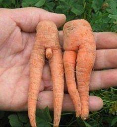 Mr et Mme Carotte..font du naturisme !