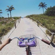 The best way to explore is with a beach cruiser. No traffic, no parking headaches.