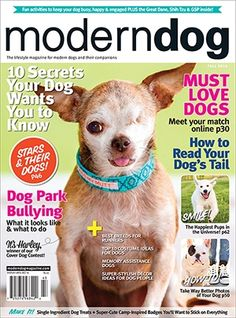 Modern Dog Magazine Fall 2014 Cover