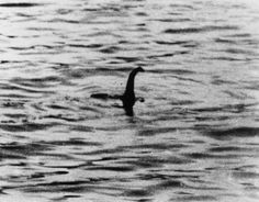 LOCH NESS MONSTER. This is probably the most famous account of a lake monster in Scotland. First reported in the 6th century, most modern interest in 'Nessie' was sparked by a sighting in 1933. Described as a creature with a body 25 ft long and a long narrow neck 12 ft long. Visit our Website now for more of these stories.