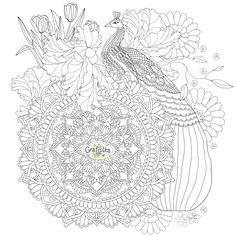 """Распечатать раскраску с павлином 