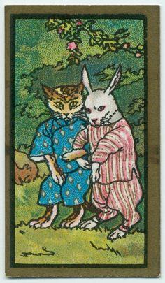 cat and rabbit japanese