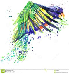 parrot-t-shirt-graphics-african-bird-parrot-illustration-splash-watercolor-textured-background-56139522.jpg (1300×1390)
