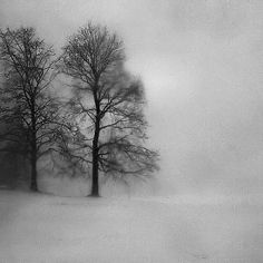 This reminds me of the sound of snow falling. Snow Queen by ShutterUp Photographics outside Halifax, Nova Scotia, Canada Nikon D40
