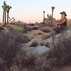 WEBSTA @ electricwest - Sedona --> Joshua Tree after 4 days on the road…