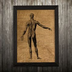 Human body print. Anatomy poster. Medical decor. Biology print.  PLEASE NOTE: this is not actual burlap, this is an art print, the image is printed