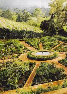 potager. With a central wooden barrel in middle would be good for biodynamic solutions stirred in bipolar motions