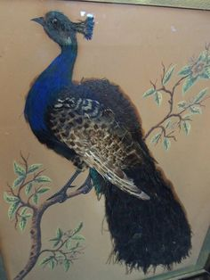 1860s Victorian Peacock Feathers Folk Art by PremierAntiquesNY