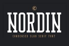 Ad: Nordin Slab - Condensed Slab Serif by Craft Supply Co. on Introducing New Font : Nordin Slab - Condensed Slab Serif Font --- Nordin Slab - Condensed Slab Serif Font is an Elegant Condensed - Great Fonts, Cool Fonts, New Fonts, Awesome Fonts, Slab Serif Fonts, Typography Fonts, Just Say Hello, Envelope Lettering, Comic