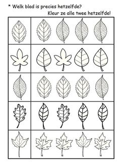 Pattern Worksheets For Kindergarten, Preschool Worksheets, Fall Preschool Activities, Leaf Template, Leaf Crafts, Autumn Crafts, Autumn Leaves, Drawing Exercises, Students
