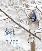 Beautiful photographs show snow in all its diversity, and as well as some of the birds active in winter as well as squirrels of course.
