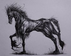 Each Uisge - The highland water horse of the sea and sea lochs. It would usually appears as a fine horse, anybody trying to mount it would become attached to its adhesive skin. It would then rush into the deepest part of the loch and devour its victim #scottish #scotland #folklore