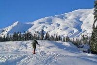 June Lake Snowshoe — Washington Trails Association