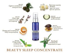 Beauty Sleep  Concentrate Overnight skin tonic!