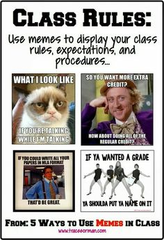This would be fantastic for a high school classroom! Back to school: Use memes for your class rules and expectations. Classroom Memes, High School Classroom, Future Classroom, Classroom Ideas, Funny Classroom Posters, English Classroom Decor, Science Classroom Decorations, Social Studies Classroom, Back To School Teacher