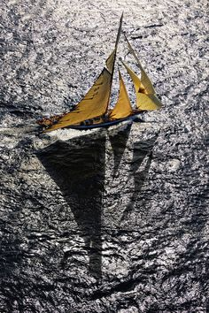 One look at Kurt Arrigo's photographs and one can quickly see that his passion is water. The backdrop of almost every one of his photos is water--whether underwater or above in a sailboat. Boat Rental, Sail Away, Underwater Photography, Underwater Photos, Film Photography, Digital Photography, Amazing Photography, Street Photography, Landscape Photography