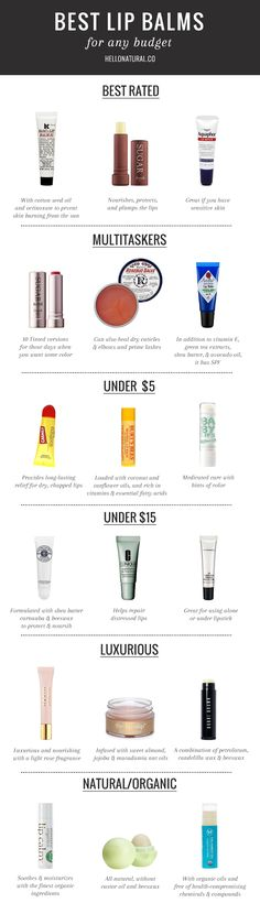 Best Lip Balms for Every Budget
