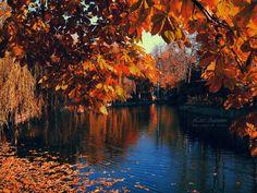 Late Autumn by AlexandruGatea on DeviantArt Late Autumn, Central Park, Romania, Places To Visit, Traveling, Deviantart, River, Sunset, City