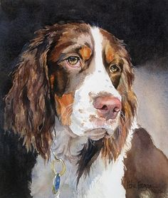 Edie Fagan Adored Dogs watercolor portrait of dog watercolor painting of English springer spaniel dog Watercolor Animals, Watercolor Paintings, Watercolor Trees, Watercolor Landscape, Abstract Paintings, Painting Art, Watercolors, Animal Paintings, Animal Drawings