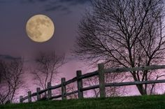Love this. November Moon, by Jim Crotty. Taken in Hocking Hills, Ohio by adele