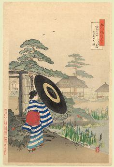 gekko Ogata : Viewing Irises